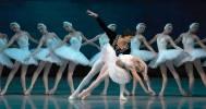 балет «Лебединое озеро» в Московский Мюзик-Холл