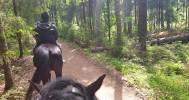 конная прогулка в Конный клуб «Селена»