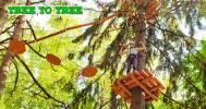 Скидки до 56% от веревочного парка TreeToTree в Веревочный парк TreeToTree Репино