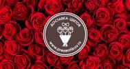 Скидки до 67% на цветы и букеты от компании Prezentikov.ru в Компания Prezentikov.ru