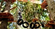 трасса в Веревочный парк TreeToTree Репино