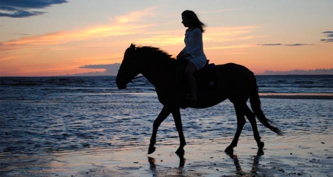 Скидки до 50% на прогулки на пони или лошади для всей семьи в Конный клуб «Селена»